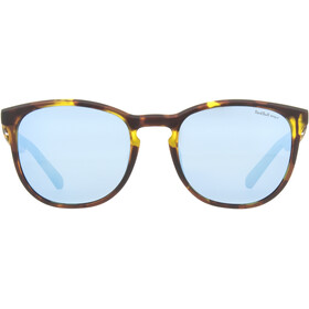 Red Bull SPECT Steady Sunglasses havanna/smoke-blue